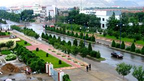 海拉路綠化工程